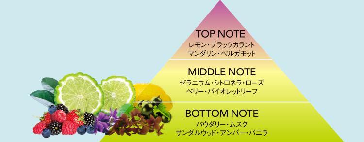 香りの説明図